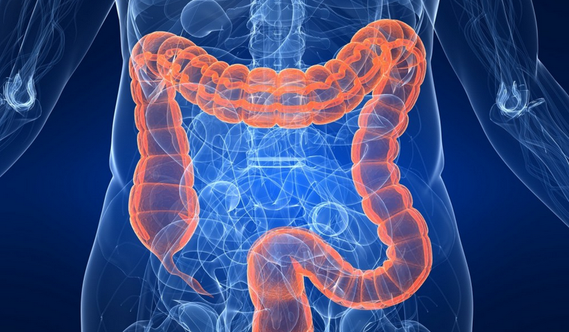 FAQs on Colon Cleansing