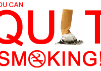 To Quit Or Not To Quit? That Is The Question