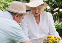 Importance Of A Memory Care Facility